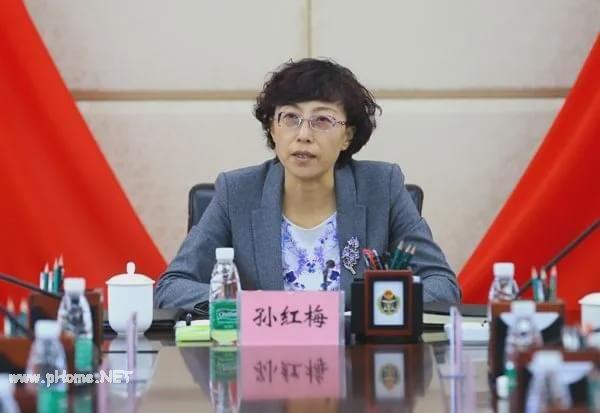 孙红梅任新疆副主席 系全国第3位70后省部级女干部