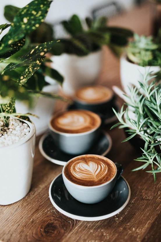 暖暖冬日如何拍摄一幅漂亮的咖啡照片