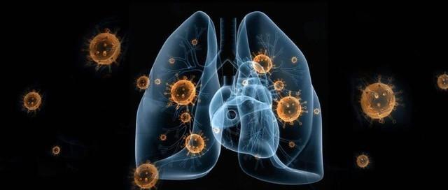 这10件事太荒唐 请理性对待新型冠状病毒肺炎
