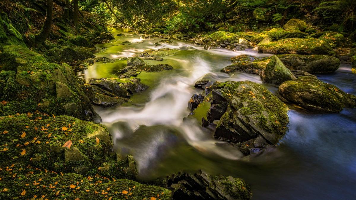 幽静的溪流图片壁纸