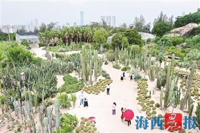 5A级美化园林植物园在蝶变 南门项目今年9月完工
